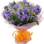 Buchet 15 irisi albastri 1